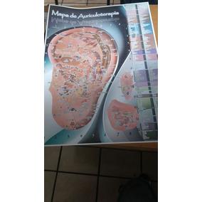 Kit Auriculoterapia Poster Semillas Micropore Porta Tachuela