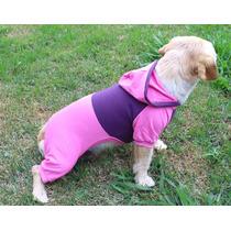 Roupas Pra Cachorro, Vestidos, Moletom Fêmea Tamanho 4
