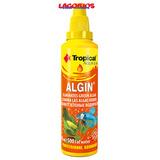 Tropical Algin Lagorios