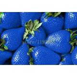 Sementes De Morango Azul 50 Sementes Raro Morango Azul