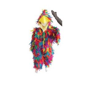 Disfraz De Pájaro