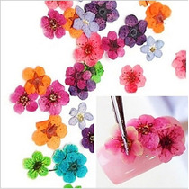 Flores Secas - Decoração Unhas - Manicure - Nail Art.