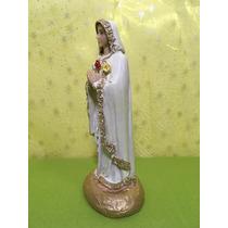Rosa Mistica Virgen
