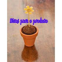 Mini Vaso P/ Lembrancinha De Casament A/5cm Boca/5cm F/3cm