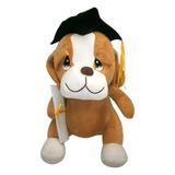 Juguete Peluche Perro Graduacion