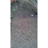 Tierra De Hojas Compost, Despacho Gratis!!!