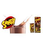 Leche Chocolatada Sandy 200 Cc Por Mayor Y Menor