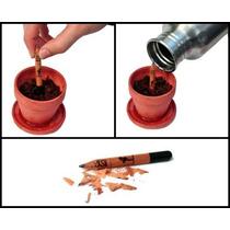 Lembrancinhas Ecológicas 10 Lápis Sementes S/ Vasinho Trevos