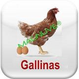 Sistema Herramienta Excel Gestión Gallinas Ponedoras Huevos