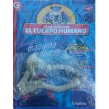 Como Funciona El Cuerpo Humano - La Nacion N° 5-7-10-12-13