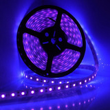 Tira De Led Ultravioleta 5050 1 Metro Interior Uv Luz Negra