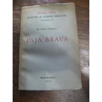 Paja Brava. Viejo Pancho