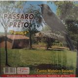 Cd Passaro Preto Fumaça