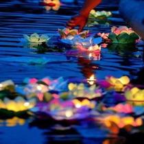 20 Flores De Loto Flotante + Vela