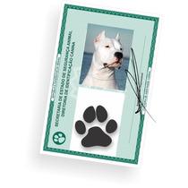 Carteira De Identidade Para Pet