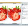 Programa Vectorizar Digitalizar Imágenes O Logos En Un Click