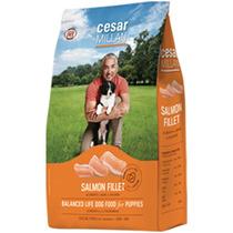 Alimento César Millan Cachorro 6 Kg, Envío Gratis Guadalajar