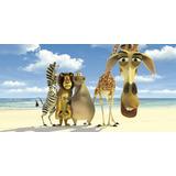 Painel Decorativo Festa Filme Madagascar [2x1m] (mod4)