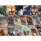Coleção Predadores Selvagens Em Dvd