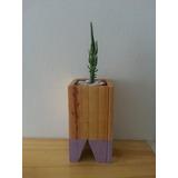 Portamaceta Nordico De Madera 15x8 (para Cactus)