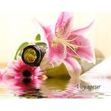 Esencia Pura Para Perfumería Fragancia Floral Oriental 500ml