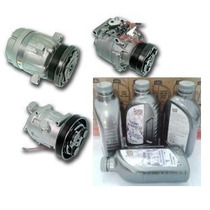 Óleo Para Compressor Ar Condicionado 1 L Pag Raid 32