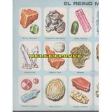 Poster Central Anteojito El Reino Mineral + Mil Ladrillos +