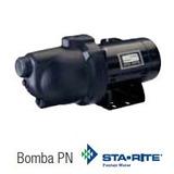 Bomba De Agua Tipo Jet Autocebante Sta-rite Pnd
