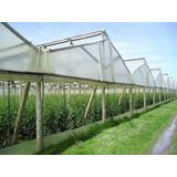 Nylon Invernadero 4 M Ancho X 200 Micrones Planta Hidroponia