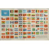 Banderas Naciones Unidas Argentinas Billiken Lamina Central