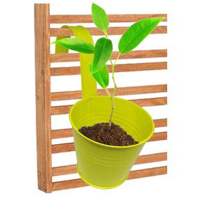 Kit Com 4 Cachepot Jardim Suspenso Vertical Vaso Planta Flor