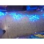 Luces Navideñas De Color Azul Tipo Led Cortina