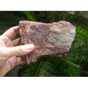 Laja De Madera Petrificada / Fosilizada - No Envío