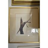 Cuadro Pintura Abstracta De Toko Shinoda