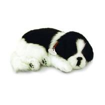 Filhote Perfect Petzzz Cachorro Border Collie Que Respira