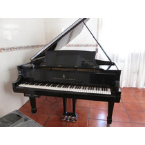 Piano Cola Marca Steinway & Sons Cola Sistema Disk