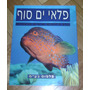 Libro De Fotos De Fauna Marina En El Mar Rojo, Eilat, Israel