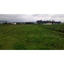 Tianguistenco Terreno 3000 M2 A Solo 15 Min. De Toluca