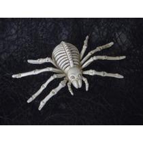Araña Esqueleto Halloween Decoración Día Muertos Calavera