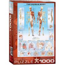 Puzzle Eurographics 1000 Piezas El Cuerpo Humano 6000-1000