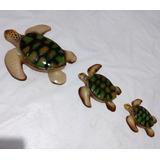 Tartaruga Marinha De Parede - Trio