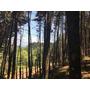Lote San Isidro Con Vista A Las Montañas Y Area De Bosque