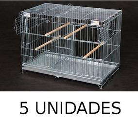 Gaiola Criadeira Para Fêmea Curio Coleiro Canário 5 Unidades