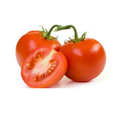 1000 Sementes De Tomate Híbrido Santa Cruz Bravo F1 - 1,0mx