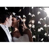 Cortina Borboleta Decoração Papel Festas, Debutantes,noivado