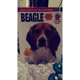 Libro Beagle En Ingles.