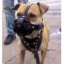 Bozal Unico !! En Nylon Pit Bull Dogo Rottwailer