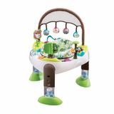 Ejercitador Para Bebés Evenflo 3 En 1 Tree House