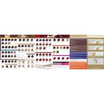 Carta De Colores Issue Professional Color Con Mechas Nuevas