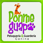 Baños Caninos / Felinos Y Peluquería A Domicilio